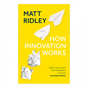 Matt Ridley - How innovation works